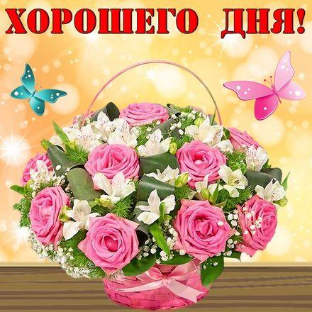 Яркая, красивая открытка хорошего дня, подруга, подружка! Корзина с розами и бабочки. Скачать открытку хорошего дня бесплатно онлайн! скачать открытку бесплатно | 123ot