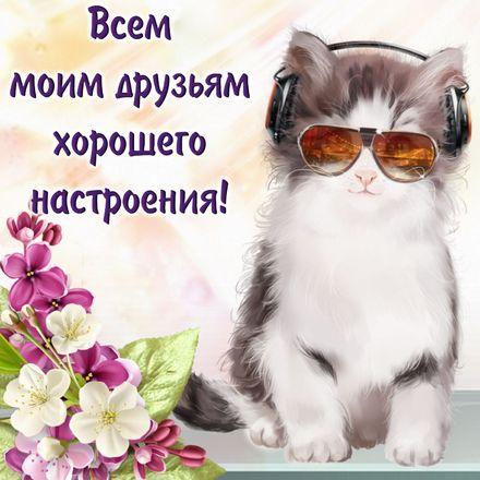 Яркая, красивая открытка хорошего настроения! Котик в очках и наушниках. Скачать открытку хорошего настроения бесплатно онлайн! скачать открытку бесплатно | 123ot