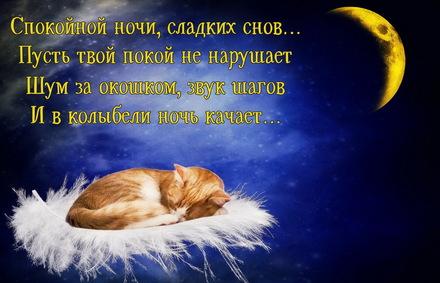 Яркая, красивая открытка спокойной ночи, сладких снов! Красивое пожелание тем, кто ложится спать. Скачать открытку спокойной ночи бесплатно онлайн! скачать открытку бесплатно | 123ot