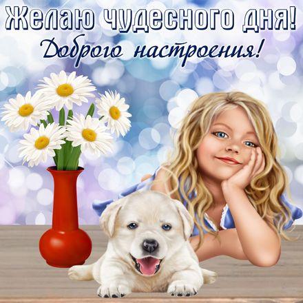 Яркая, красивая открытка хорошего дня, подруга, подружка! Открытка с девочкой и собачкой. Скачать открытку хорошего дня бесплатно онлайн! скачать открытку бесплатно   123ot