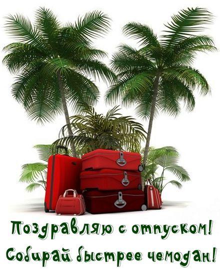Яркая, красивая открытка на тему отпуска! Поздравление с отпуском на фоне пальм. Скачать открытку хорошего отпуска, хорошо отдохнуть бесплатно онлайн! скачать открытку бесплатно | 123ot