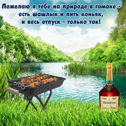 Яркая, красивая открытка на тему отпуска! Шашлык и коньяк на фоне природы. Скачать открытку хорошего отпуска, хорошо отдохнуть бесплатно онлайн! скачать открытку бесплатно   123ot