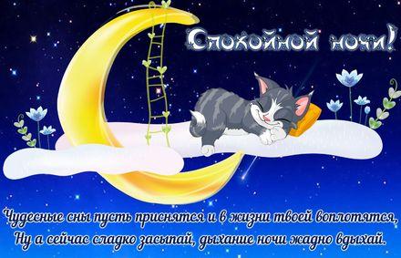 Яркая, красивая открытка спокойной ночи, сладких снов! Забавный котенок спящий на луне. Скачать открытку спокойной ночи бесплатно онлайн! скачать открытку бесплатно | 123ot
