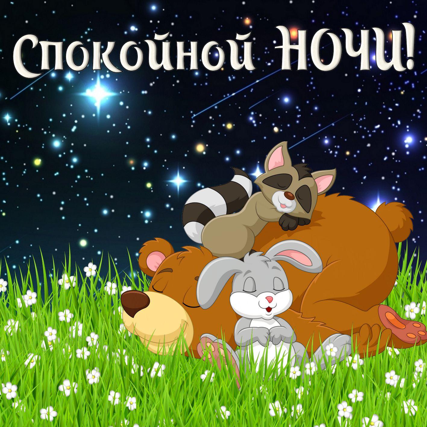 Анимациями, животные анимация картинки спокойной ночи