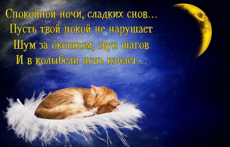 Красивые картинки спокойной ночи сладких снов любимой, для