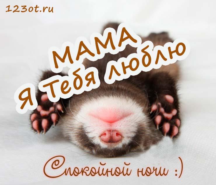 открытка доброй ночи мамуля это один идолов
