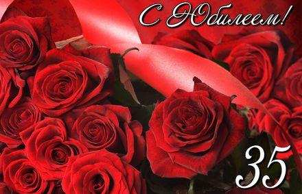 Яркая, красивая открытка с днём рождения на юбилей 35 лет с текстом, с пожеланием и стихом! С юбилеем, с днём рождения, тридцать пять лет! Открытка с розами на красном фоне. Скачать открытку на юбилей 35 лет бесплатно онлайн! скачать открытку бесплатно | 123ot