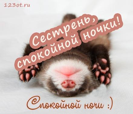 Замечательная открытка спокойной и доброй ночи для сестры! скачать открытку бесплатно | 123ot