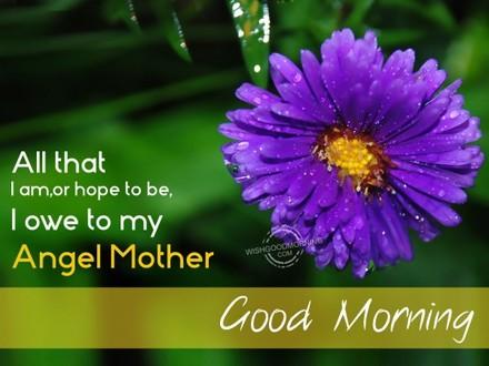 Цветок! Доброе утречко, мамуля, картинки доброе утро мама, с добрым утром мама, доброе утро мама картинки, доброе утро мама картинки красивые, скачать картинки с добрым утром мама! скачать открытку бесплатно | 123ot