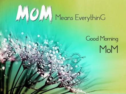 Капли росы! Доброе утречко, мамуля, картинки доброе утро мама, с добрым утром мама, доброе утро мама картинки, доброе утро мама картинки красивые, скачать картинки с добрым утром мама! скачать открытку бесплатно | 123ot