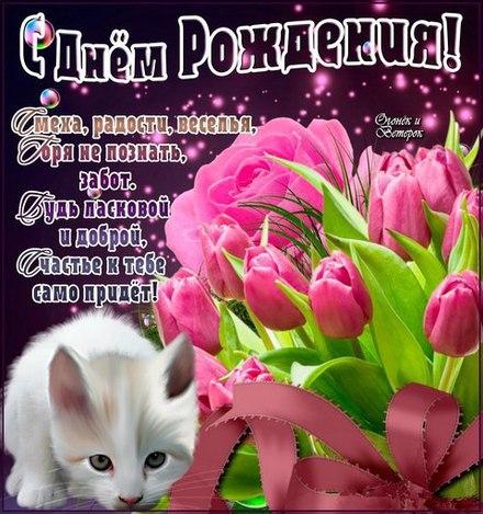 Кошечка! Красивые открытки с днём рождения женщине для вацап, whatsapp! Скачать бесплатно онлайн! скачать открытку бесплатно | 123ot