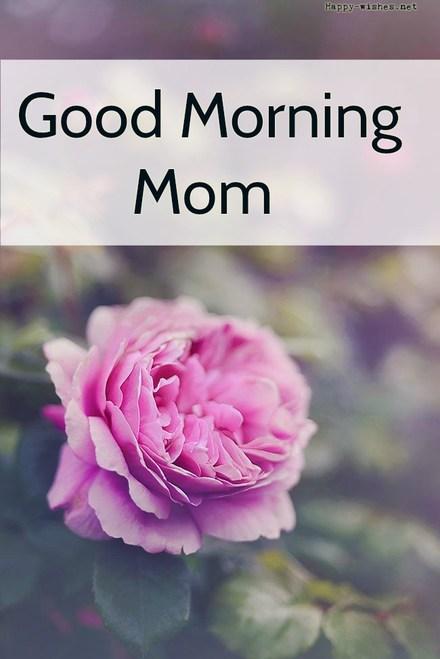 Красивая открытка маме! Доброе утречко, мамуля, картинки доброе утро мама, с добрым утром мама, доброе утро мама картинки, доброе утро мама картинки красивые, скачать картинки с добрым утром мама! скачать открытку бесплатно | 123ot