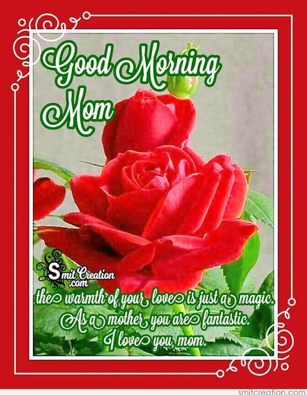 Красная роза! Доброе утречко, мамуля, картинки доброе утро мама, с добрым утром мама, доброе утро мама картинки, доброе утро мама картинки красивые, скачать картинки с добрым утром мама! скачать открытку бесплатно | 123ot