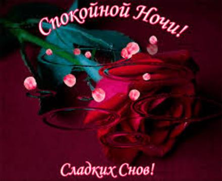 Красная роза! Скачать! Анимации с пожеланием спокойной ночи, пожелания спокойной ночи гифы! Оригинальные пожелания спокойной ночи, анимация! скачать открытку бесплатно   123ot