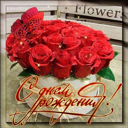Красное счастье! Красивые открытки с днём рождения женщине для вацап, whatsapp! Скачать бесплатно онлайн! скачать открытку бесплатно | 123ot