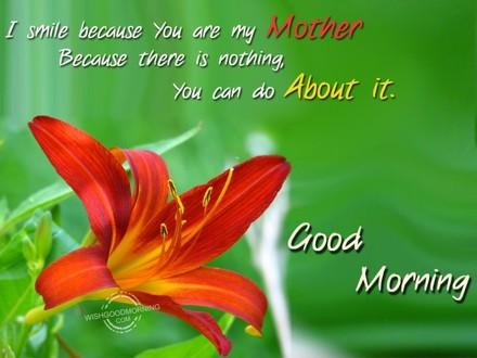 Лилия! Доброе утречко, мамуля, картинки доброе утро мама, с добрым утром мама, доброе утро мама картинки, доброе утро мама картинки красивые, скачать картинки с добрым утром мама! скачать открытку бесплатно | 123ot