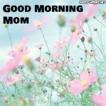 Нежность утра для лучшей мамы! Доброе утречко, мамуля, картинки доброе утро мама, с добрым утром мама, доброе утро мама картинки, доброе утро мама картинки красивые, скачать картинки с добрым утром мама! скачать открытку бесплатно | 123ot