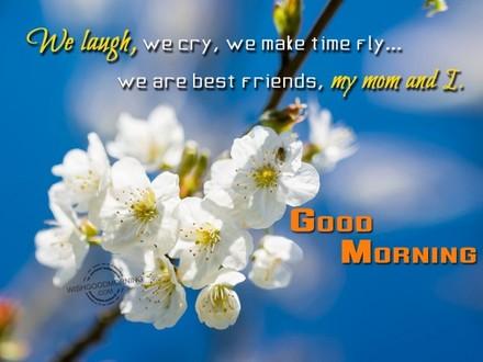 Нежные цветочки яблони! Доброе утречко, мамуля, картинки доброе утро мама, с добрым утром мама, доброе утро мама картинки, доброе утро мама картинки красивые, скачать картинки с добрым утром мама! скачать открытку бесплатно | 123ot
