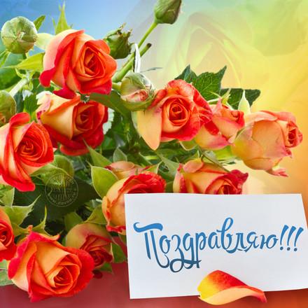 Поздравляю! Красивые открытки с днём рождения женщине для вацап, whatsapp! Скачать бесплатно онлайн! скачать открытку бесплатно | 123ot