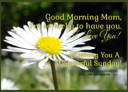 Ромашка для мамы! Доброе утречко, мамуля, картинки доброе утро мама, с добрым утром мама, доброе утро мама картинки, доброе утро мама картинки красивые, скачать картинки с добрым утром мама! скачать открытку бесплатно | 123ot