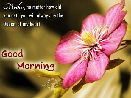 Солнечное утро! Доброе утречко, мамуля, картинки доброе утро мама, с добрым утром мама, доброе утро мама картинки, доброе утро мама картинки красивые, скачать картинки с добрым утром мама! скачать открытку бесплатно | 123ot