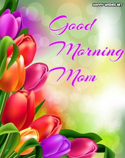 Яркие тюльпаны! Доброе утречко, мамуля, картинки доброе утро мама, с добрым утром мама, доброе утро мама картинки, доброе утро мама картинки красивые, скачать картинки с добрым утром мама! скачать открытку бесплатно | 123ot