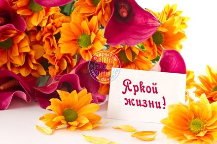 Яркой жизни! Красивые открытки с днём рождения женщине для вацап, whatsapp! Скачать бесплатно онлайн! скачать открытку бесплатно | 123ot