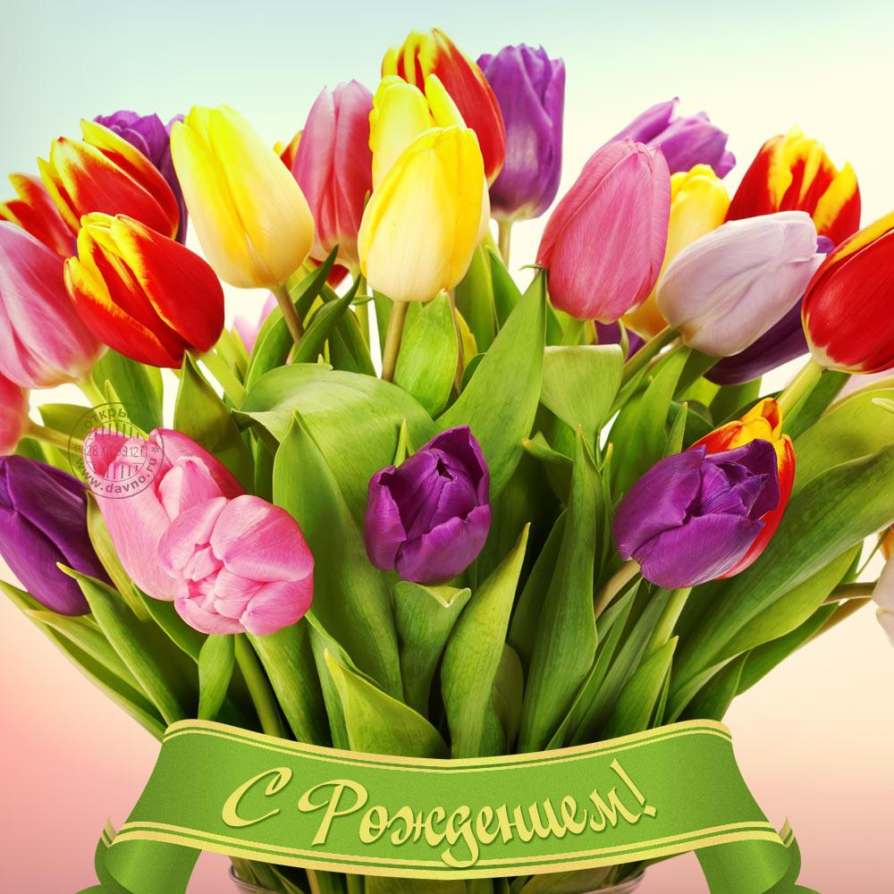 Открытки ко дню рождения-тюльпаны, пожелание казахском