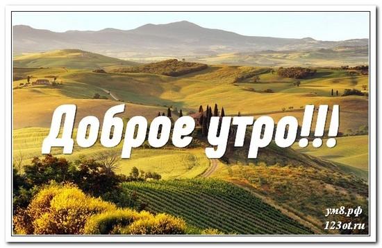 Картинка, открытка, природа, доброе утро скачать бесплатно! скачать открытку бесплатно | 123ot
