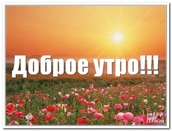 Картинка с красивой природой, доброе утро скачать бесплатно! скачать открытку бесплатно | 123ot