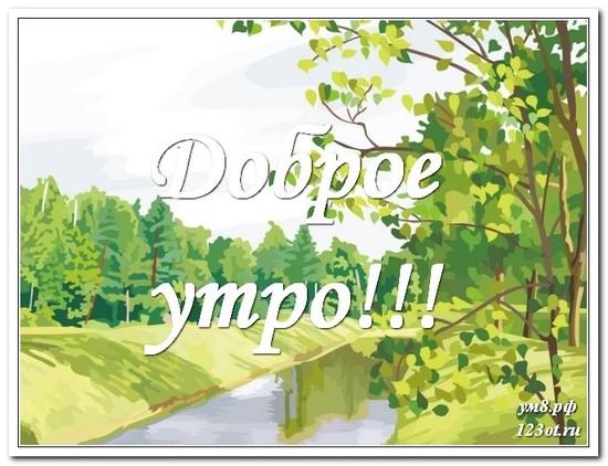 Картинка с красивой природой, с добрым утром поделиться в вацап онлайн! скачать открытку бесплатно   123ot