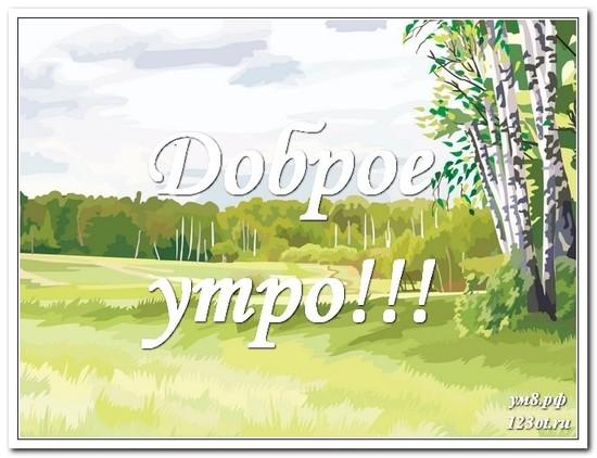 Красота природы, поздравительная открытка, с добрым утром поделиться в вацап другу! скачать открытку бесплатно   123ot
