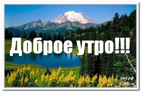Открытка, картинка, красивая природа, доброе утро скачать другу! скачать открытку бесплатно | 123ot