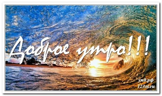 Открытка, картинка, красивая природа, с добрым утром поделиться в вацап онлайн! скачать открытку бесплатно | 123ot