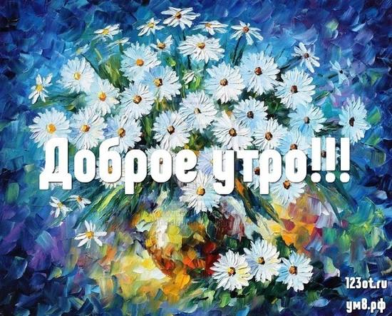 Доброе утро и отличного дня, красивая картинка, фотография с природой, с цветами девушке, женщине отправить на вацап! скачать открытку бесплатно | 123ot