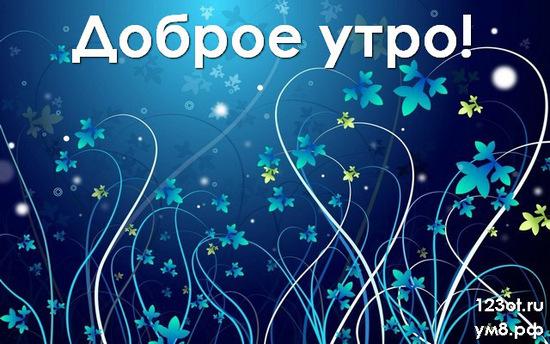Доброе утро и отличного дня, красивая открытка, картинка с цветочками (цветы) для девушки, женщины скачать! скачать открытку бесплатно   123ot