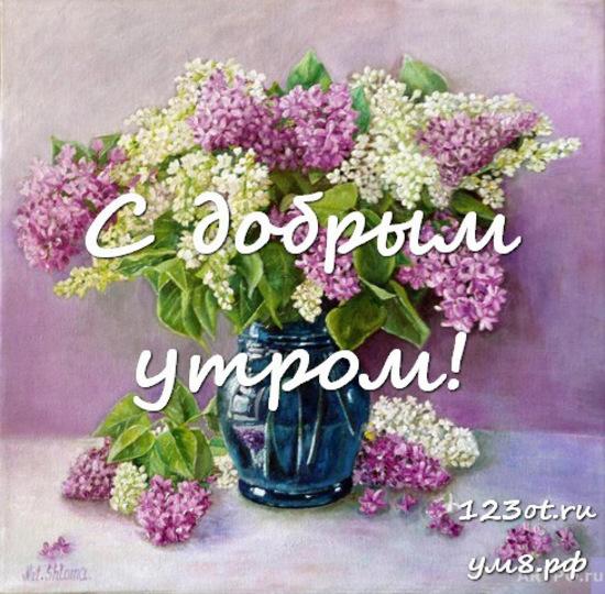Доброе утро, красивая открытка, картинка с цветами для женщины, для жены скачать бесплатно! скачать открытку бесплатно | 123ot