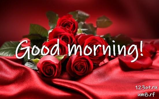 Доброе утро, красивая открытка, картинка с цветочками (цветы) девушке, женщине отправить на вацап! скачать открытку бесплатно | 123ot