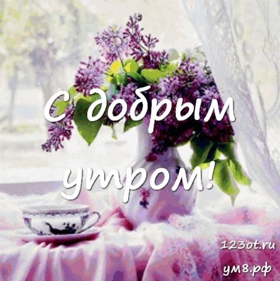 Доброе утро, красивая открытка, картинка с цветочками (цветы) женщине, жене скачать онлайн! скачать открытку бесплатно | 123ot