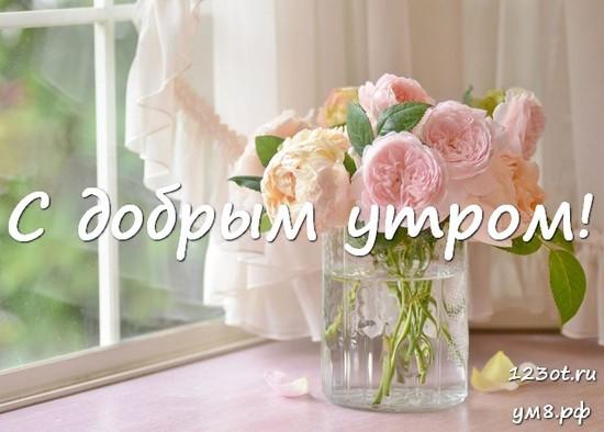 Доброе утро, красивая открытка, картинка с красивыми цветами женщине, жене скачать онлайн! скачать открытку бесплатно | 123ot