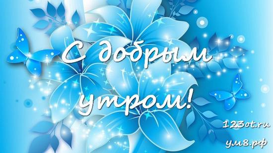 Доброго утра и хорошего дня, красивая картинка, фотография с цветочками (цветы) женщине, жене скачать онлайн! скачать открытку бесплатно | 123ot