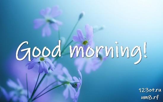Доброго утра и хорошего дня, красивая открытка, картинка с цветами женщине, жене скачать онлайн! скачать открытку бесплатно | 123ot