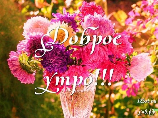 Доброго утречка, красивая открытка, картинка с цветочками (цветы) для девушки, женщины скачать! скачать открытку бесплатно | 123ot