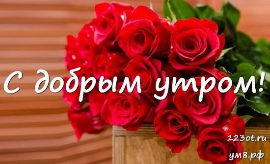 Красивого утра, красивая картинка, фотография с цветами девушке, женщине отправить на вацап! скачать открытку бесплатно | 123ot