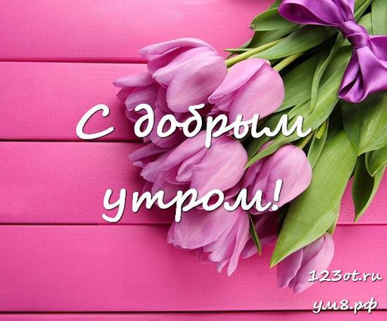 Красивого утра, красивая картинка, фотография с цветами для девушки, женщины скачать! скачать открытку бесплатно | 123ot