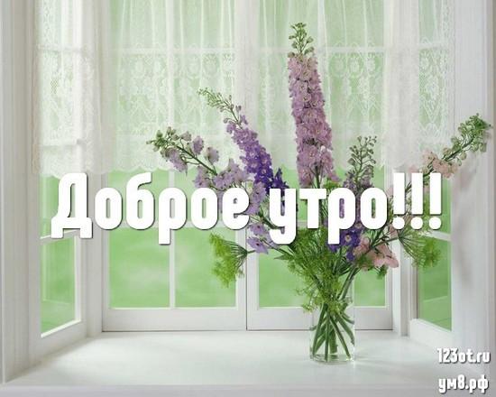 Красивого утра, красивая открытка, картинка с цветами девушке, женщине отправить на вацап! скачать открытку бесплатно | 123ot