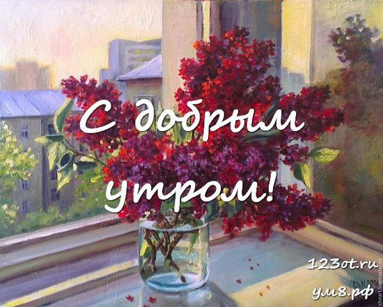 Красивого утра, красивая открытка, картинка с цветочками (цветы) девушке, женщине отправить на вацап! скачать открытку бесплатно | 123ot