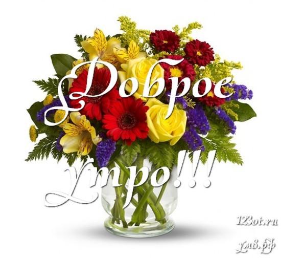Прекрасного утра, красивая открытка, картинка с цветами девушке, женщине отправить на вацап! скачать открытку бесплатно   123ot