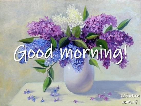Прекрасного утра, красивая открытка, картинка с цветочками (цветы) женщине, жене скачать онлайн! скачать открытку бесплатно | 123ot