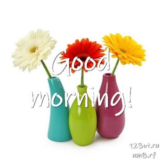 С добрым утром, красивая картинка, фотография с красивыми цветами для девушки, женщины скачать! скачать открытку бесплатно | 123ot